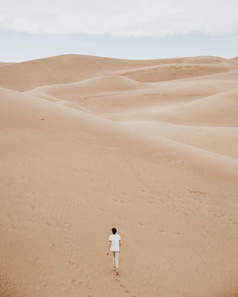 arid-1850865_1920