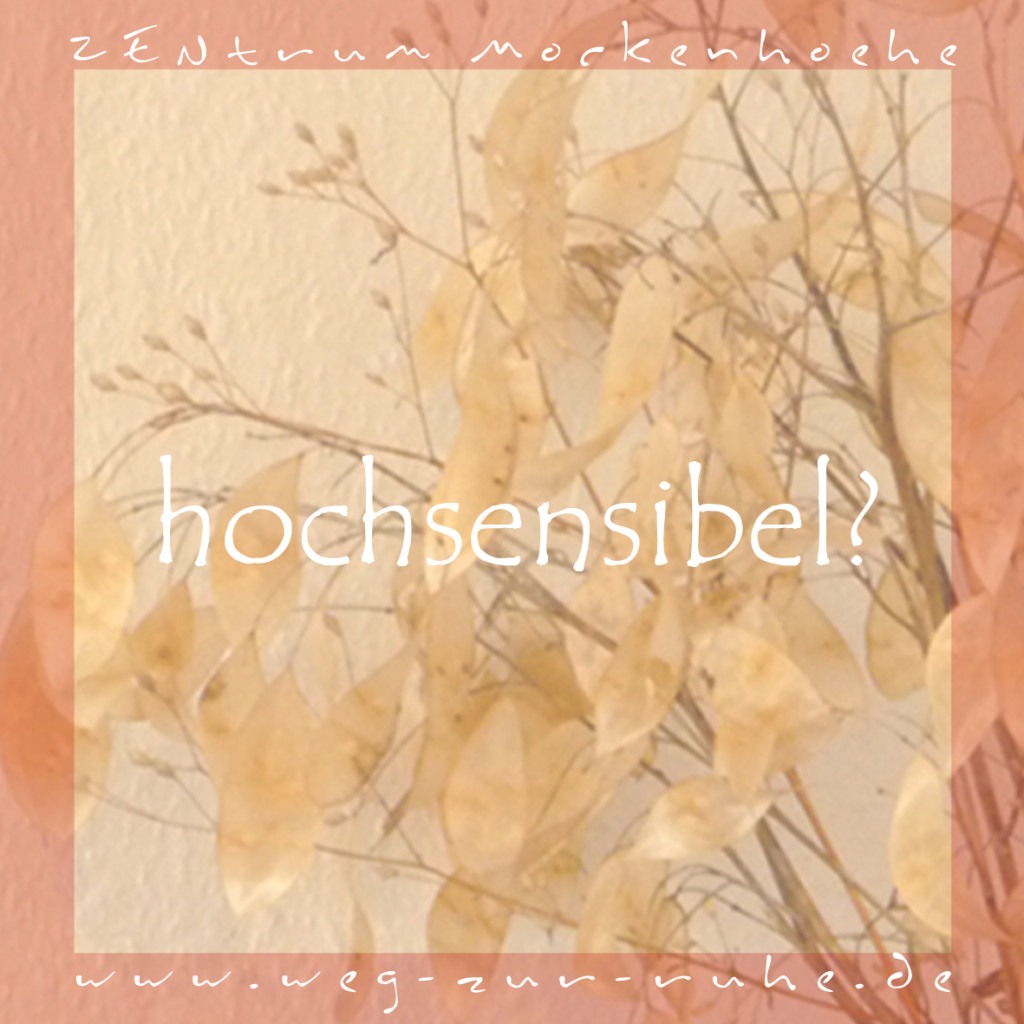 hochsensibel2-front